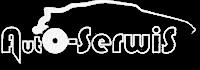 logo serwis samochodowy wielkopolska